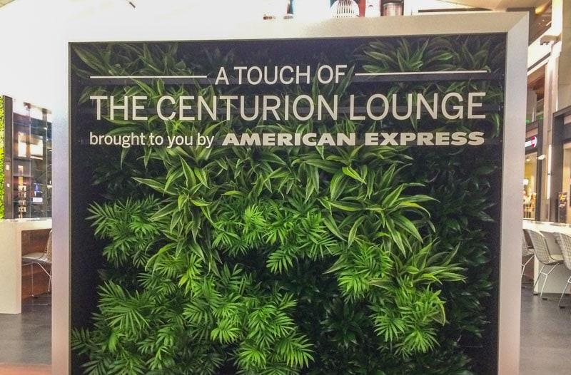 brushed aluminum metal letters foliage amex
